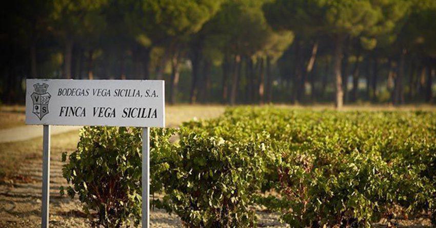 Bodegas Vega Sicilia: Mito y Tradición.