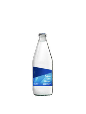 AGUA SANT ANIOL NAT 50CL