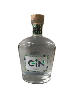 GIN EXTREME MARCATI