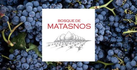 BANNER-BOSQUE-DE-MATASNOS-blog
