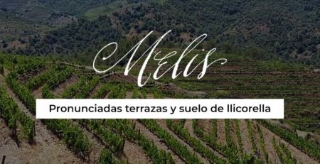 banner-BLOG-can-melis