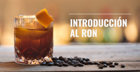 introduccion-al-ron