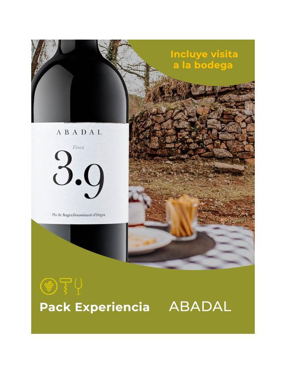 EXPERIENCIA-ABADAL